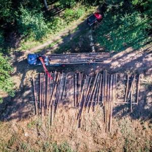 prace nad wycinką drewna