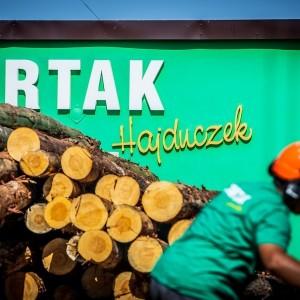 produkcja-drewna-uslugi-tartaczne-13