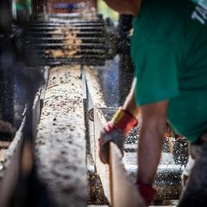 produkcja drewna w tartaku