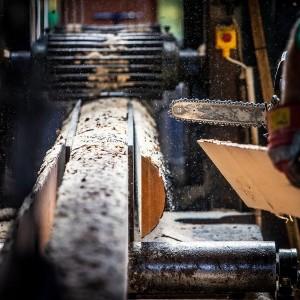 produkcja-drewna-uslugi-tartaczne