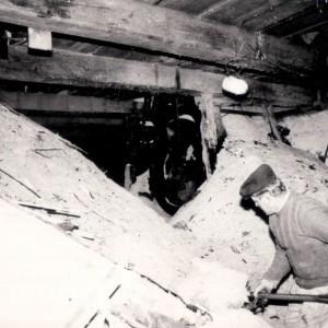 produkcja-drewna-uslugi-tartaczne-38
