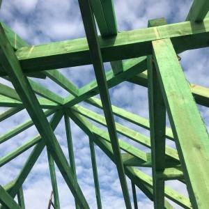 zielone belki